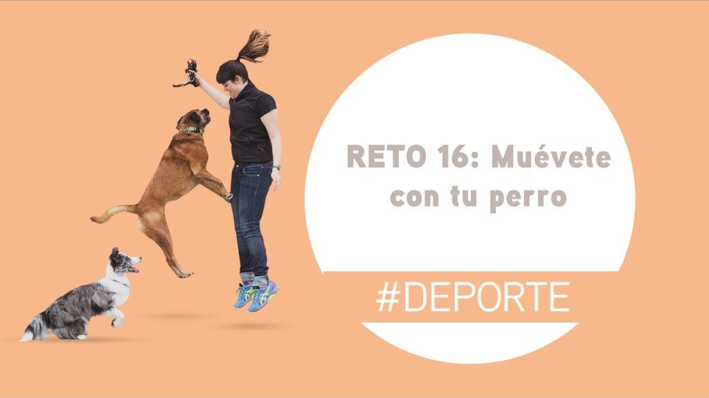 Reto 16: Muévete con tu perro