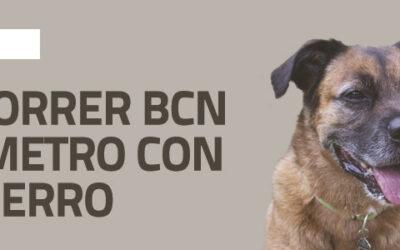 Cómo viajar en el metro de Barcelona con un perro