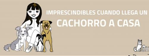 [infografía] Imprescindible cuando llega un cachorro a casa