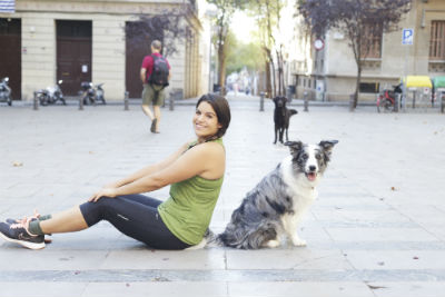 perro border collie adulto sentado en medio de una plaza