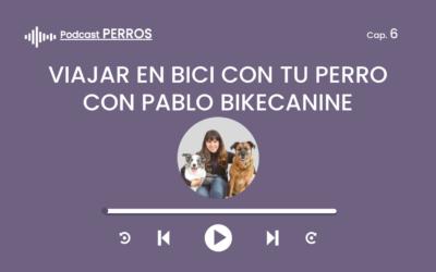Capítulo 6. La aventura de viajar por el mundo en bici con perro (Pablo de Bikecanine)