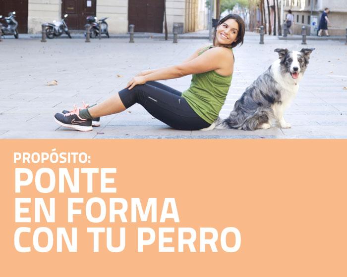 Ponte en forma con tu perro - PAT Educadora Canina