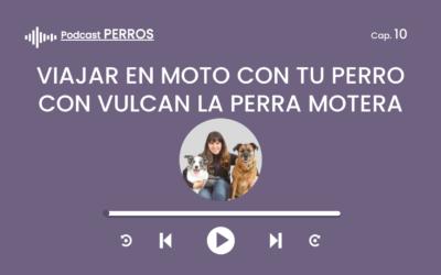 Capítulo 10. Viajar en moto con tu perro (Vulcan la perra motera)