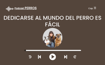 Capítulo 11. Dedicarse profesionalmente al mundo del perro es fácil