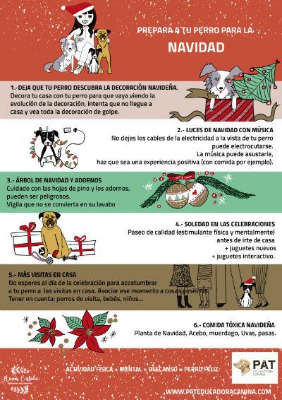 Infograf a prepara a tu perro para la navidad pat - Libro 21 dias para tener tu casa en orden ...