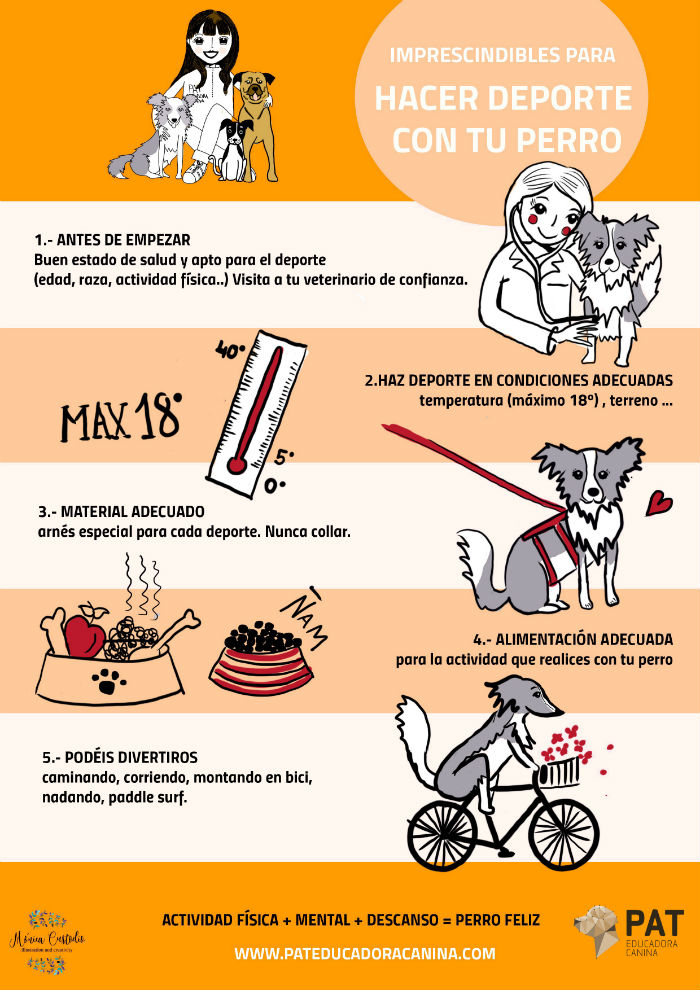 pat-infografia-deporte2br