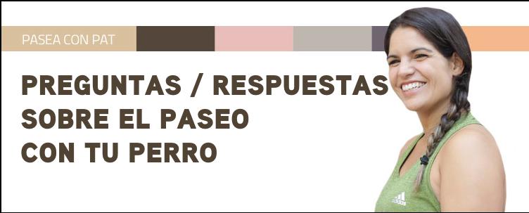 PREGUNTAS/RESPUESTAS SOBRE EL PASEO CON TU PERRO