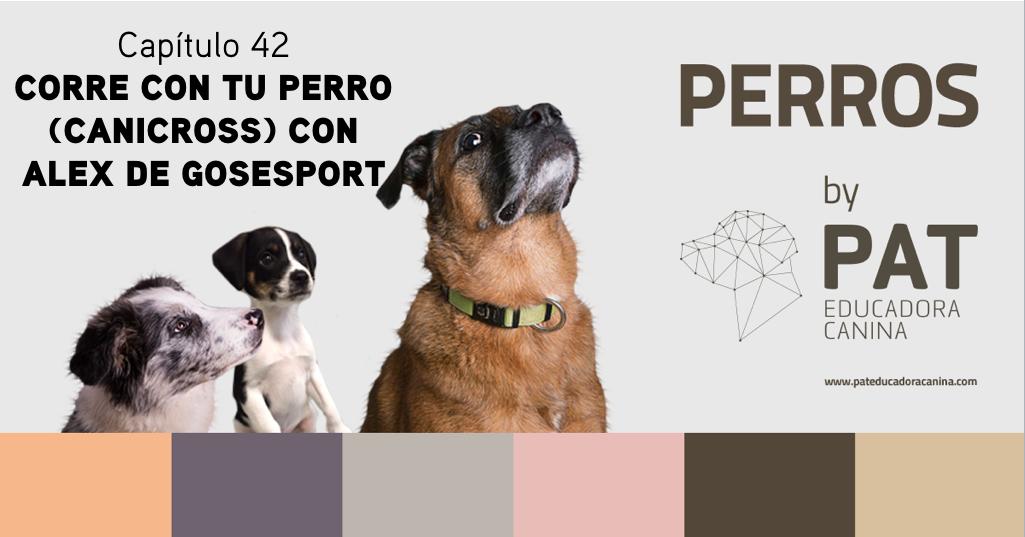Capítulo 42. Correr con tu perro con Alex de GosEsport