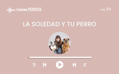 Capítulo 53. La soledad y tu perro