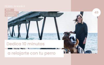 Capítulo 49. Dedica 10 minutos a relajarte con tu perro