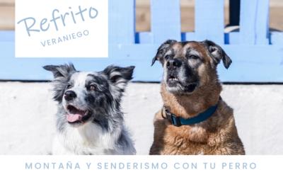 [REFRITO Veraniego] Montaña y senderismo con tu perro