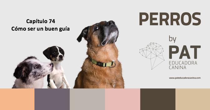 [PODCASTperros] Capítulo 74: Cómo ser un buen guía para tu perro