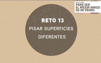 RETO 13: PISAR DIFERENTES SUPERFICIES