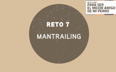 RETO 8: MANTRAILING