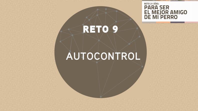 Reto 9: AUTOCONTROL (2018)