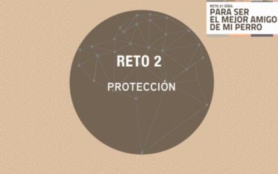Reto 2: Protección