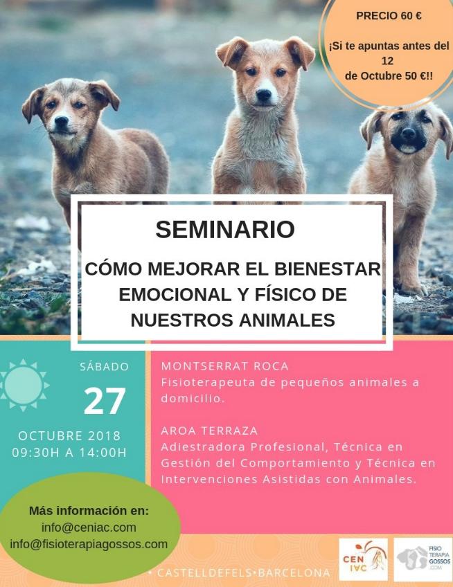 [ESPECIALperroTRANQUILO] Aromaterapia y tu perro