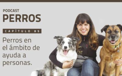 Capítulo 85. Perros en el ámbito de ayuda a personas
