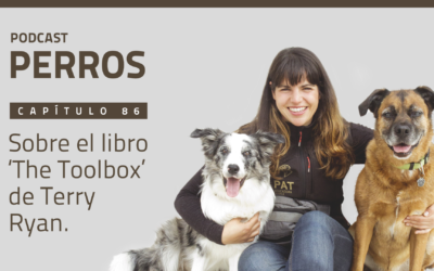 Capítulo 86. Sobre el libro 'The Toolbox' de Terry Ryan
