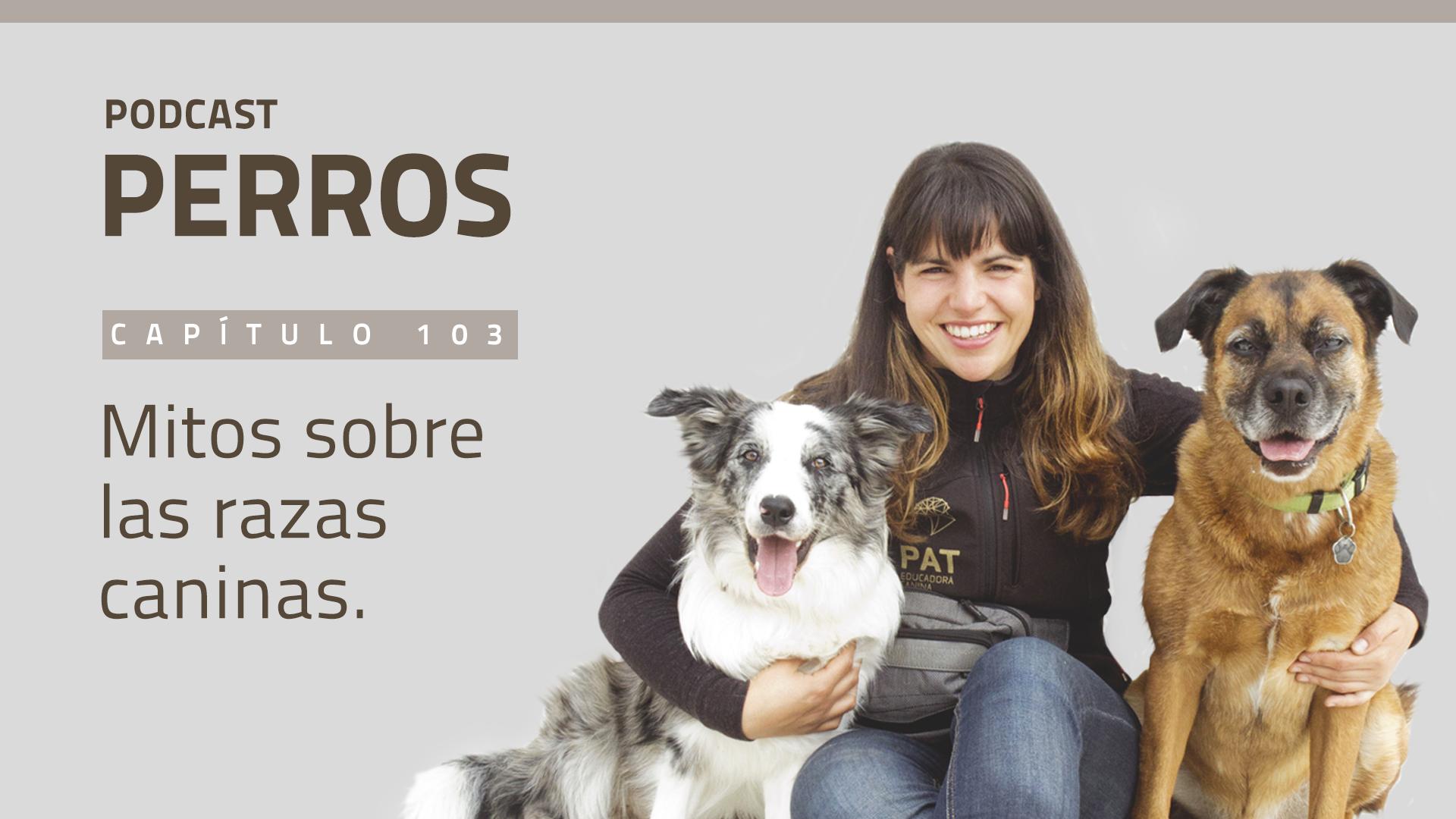 [PODCASTperros] Capítulo 103. Mitos sobre las razas caninas