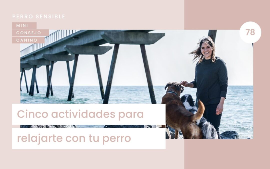 Capítulo 78. Actividades para relajarte con tu perro