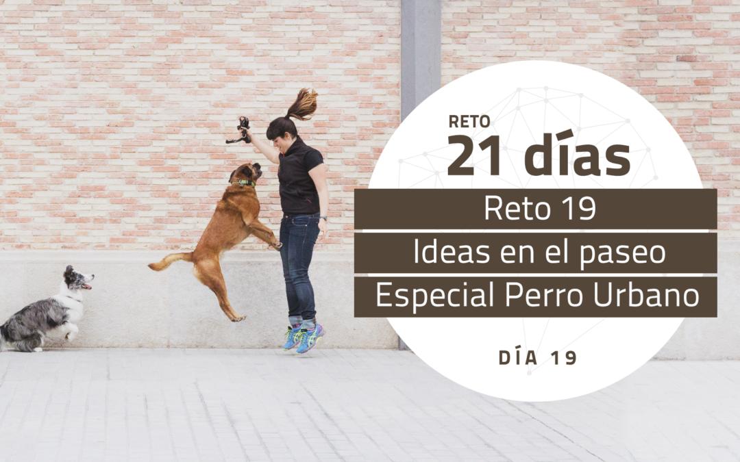 [Reto 19 – Ideas en el paseo] Reto 21 días para darle la vuelta al mundo de tu perro
