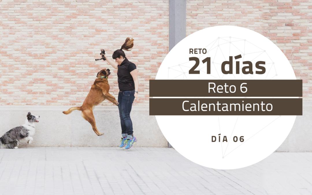 [Reto 6 – Calentamiento] Reto 21 días para darle la vuelta al mundo de tu perro