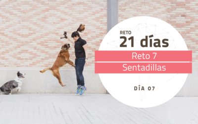 [Reto 7 – Sentadillas] Reto 21 días para darle la vuelta al mundo de tu perro