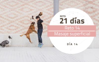 [Reto 14 – Masaje superficial] Reto 21 días para darle la vuelta al mundo de tu perro