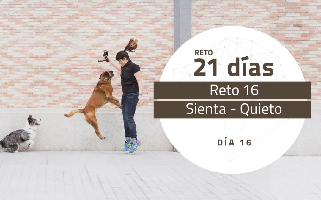 [Reto 16 – Sienta-Quieto] Reto 21 días para darle la vuelta al mundo de tu perro