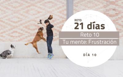[Reto 10 – Tu Mente: Frustración] Reto 21 días para darle la vuelta al mundo de tu perro
