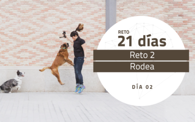 [Reto 2 – Rodea] Reto 21 días para darle la vuelta al mundo de tu perro