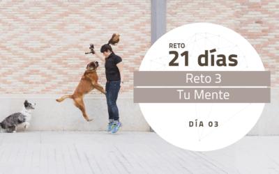 [Reto 3 – Tu Mente] Reto 21 días para darle la vuelta al mundo de tu perro