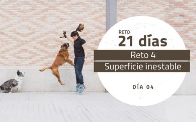[Reto 4 – Superficie inestable] Reto 21 días para darle la vuelta al mundo de tu perro