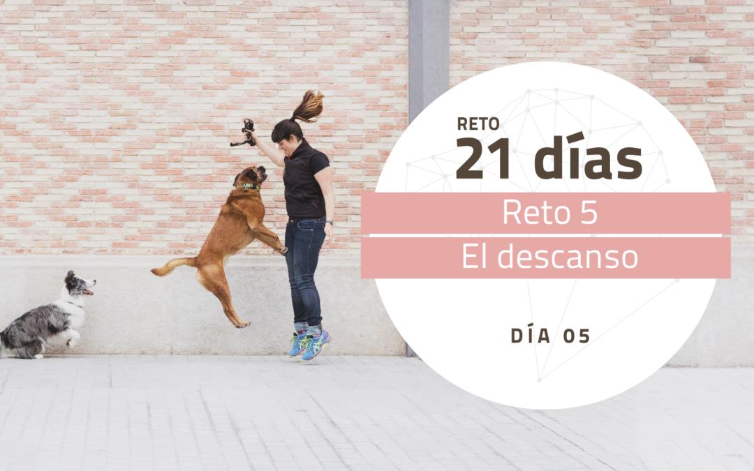 [Reto 5 – Descanso] Reto 21 días para darle la vuelta al mundo de tu perro