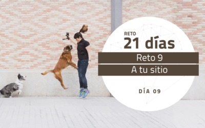 [Reto 9 – A tu sitio] Reto 21 días para darle la vuelta al mundo de tu perro