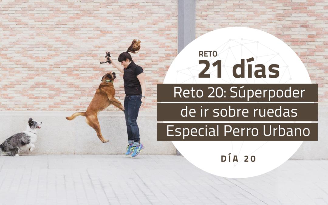 [Reto 20 – Súperpoder de ir sobre ruedas] Reto 21 días para darle la vuelta al mundo de tu perro