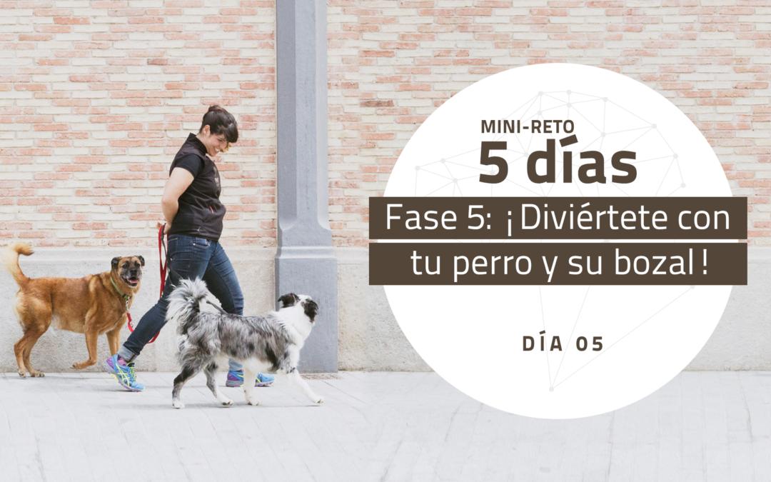 [Mini-Reto 5] Fase 5: ¡Diviértete con tu perro y su bozal!