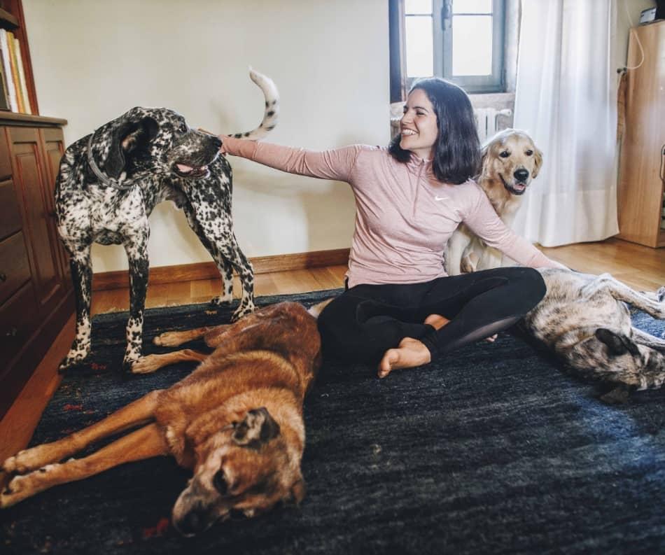 Iniciación al Lenguaje Canino