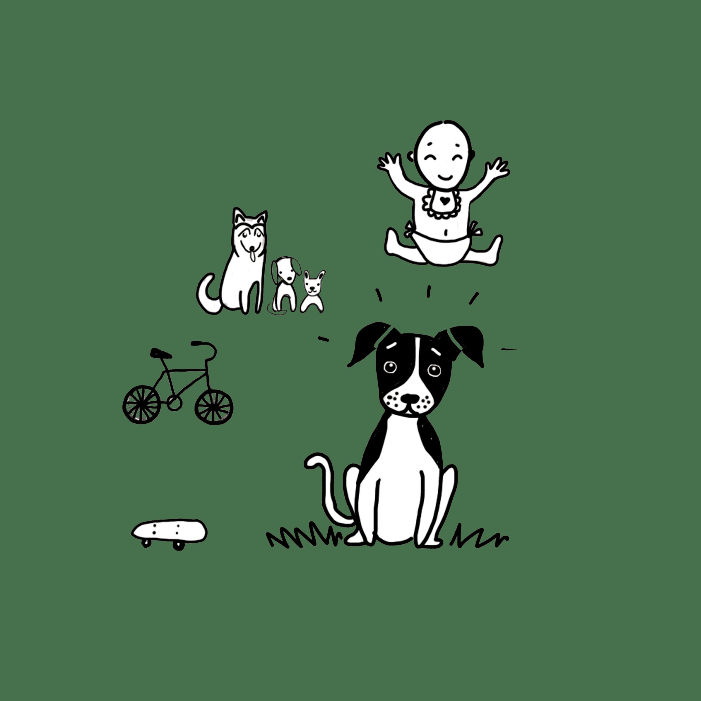Curso Perro Urbano - PAT Educadora canina