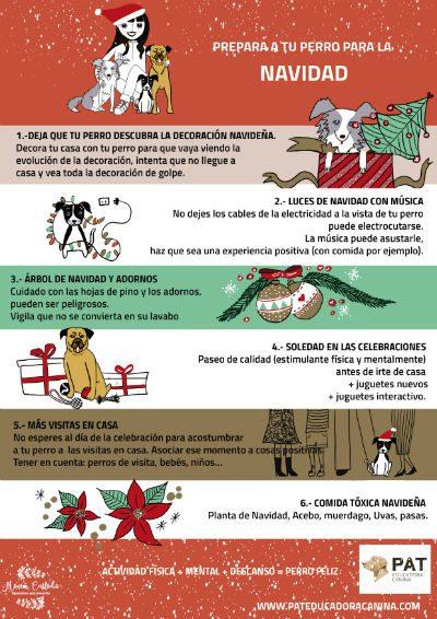 pat-infografia-navidad2