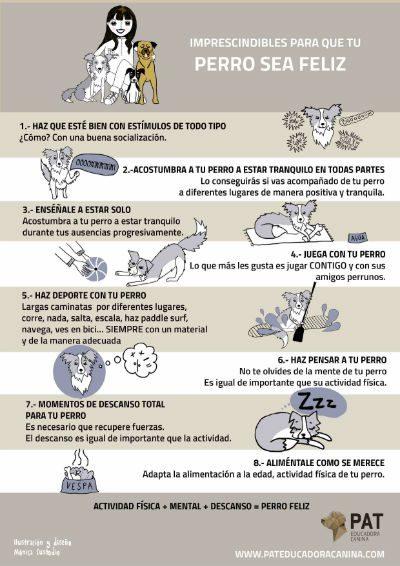 pat-infografia-perrofelizBC2