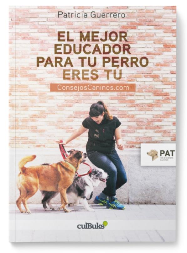 El mejor educador para tu perro eres tú