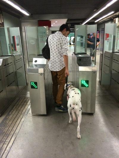 puerta-metro