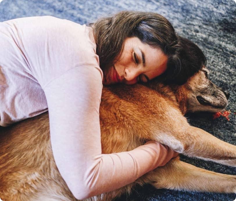 Pautas para un perro zen