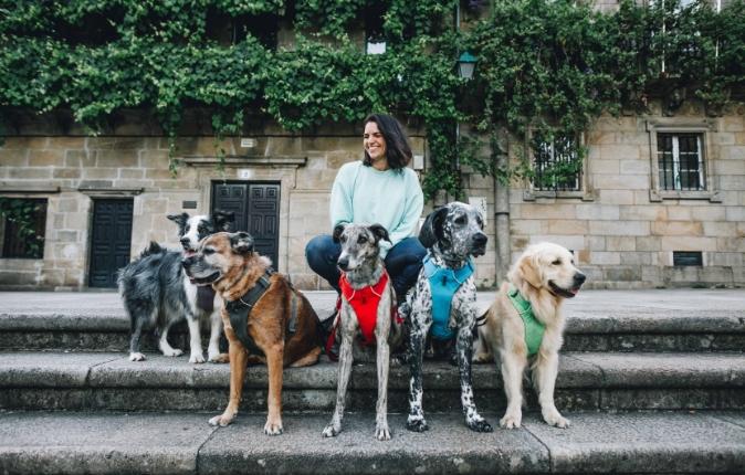 Webinar viajar con perro
