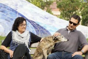 perro-senior-parque