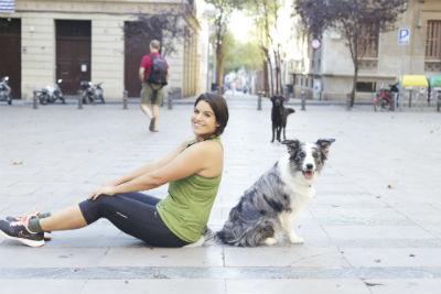 perro border collie adulto sentado en medio de una plaza