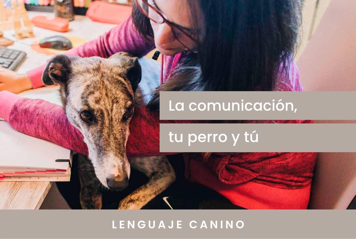 La comunicación con tu perro