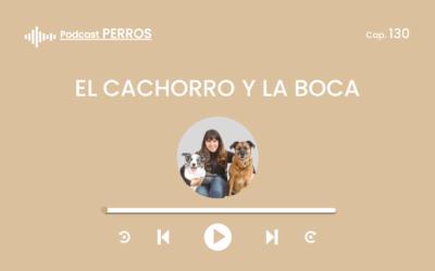 Capítulo 130. El cachorro y la boca